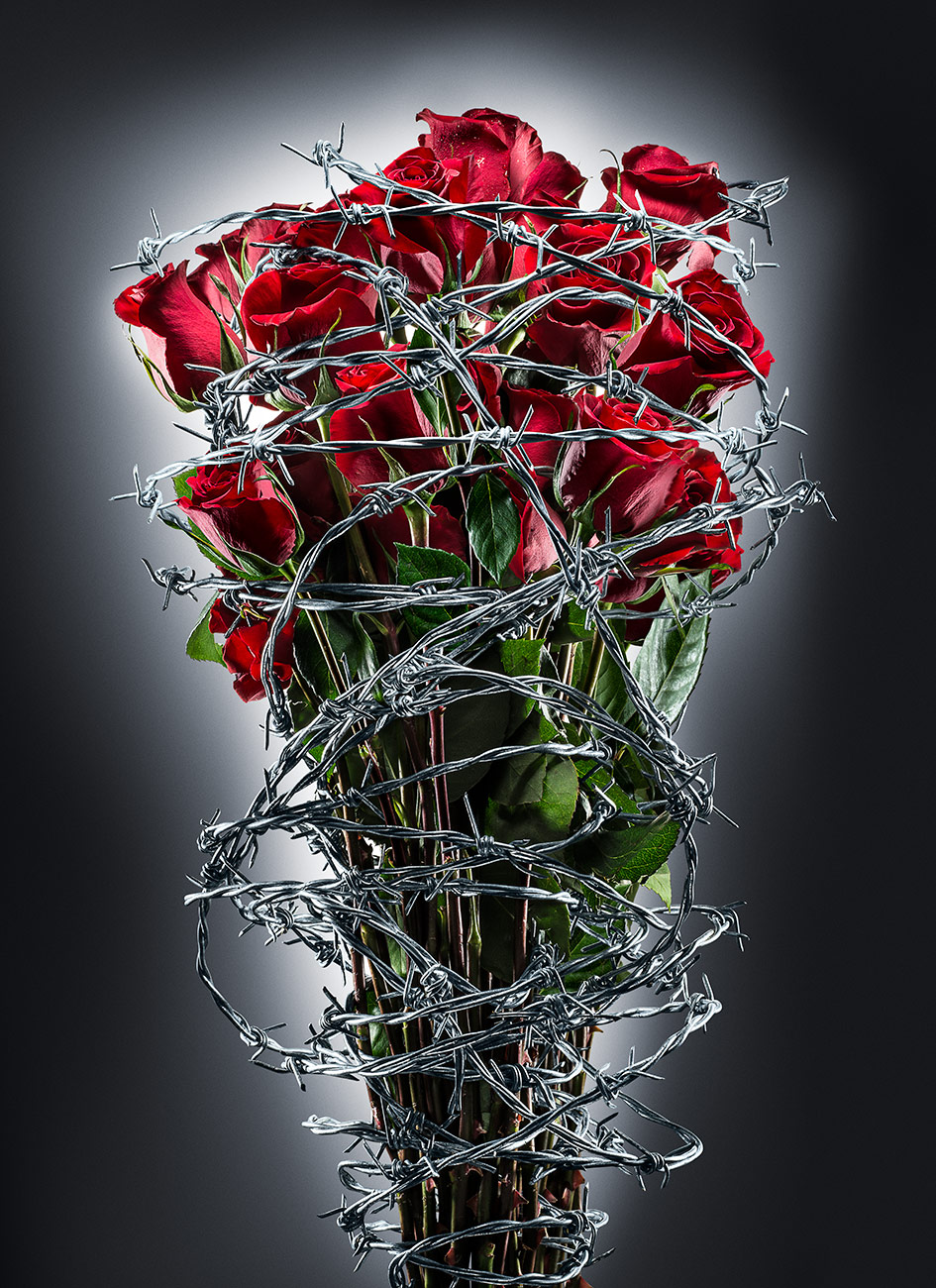 Roses_BarbedWire_M2